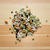 misto · secas · feijões · ervilhas · preto - foto stock © sarahdoow