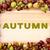 sonbahar · yazılı · ahşap · sınır · ahşap · at - stok fotoğraf © sarahdoow