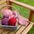 корзины · оранжевый · зеленый · ткань · красный - Сток-фото © sarahdoow