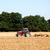 trator · solo · vermelho · disco · para · cima · colheita - foto stock © sarahdoow