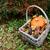 outono · cesta · abóbora · folhas · vermelho - foto stock © sarahdoow