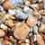 çekirge · oturma · taşlar · taş · böcek - stok fotoğraf © sarahdoow