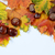 autumn leaves and chesnuts with scpae for your text stock photo © sarkao