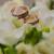 2 · 結婚指輪 · 無限 · にログイン · 愛 · 花束 - ストックフォト © sarymsakov