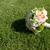 esküvői · csokor · gyönyörű · friss · színes · menyasszonyi · virágcsokor - stock fotó © sarymsakov
