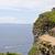 sziklák · Írország · óceán · köztársaság · Európa · felhők - stock fotó © sbonk