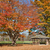zielone · drzew · dzień · wody · krajobraz · ogród - zdjęcia stock © sbonk