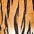 echt · tijger · bont · textuur · gestreept · patroon - stockfoto © scheriton