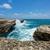rocky limestone coastline at devils bridge antigua stock photo © scheriton