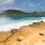 waves crashing on rocky limestone coastline at half moon bay stock photo © scheriton