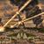 aarde · meteoor · douche · communie · afbeelding · geven - stockfoto © sdecoret