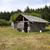 velho · celeiro · cabine · abandonado · floresta · textura - foto stock © searagen