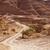 Bush · secar · rojo · rocas · arenisca · canón - foto stock © searagen