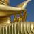 buda · estátua · tsunami · Sri · Lanka · céu · água - foto stock © searagen