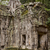 храма · руин · стиль · дерево · природы · искусства - Сток-фото © searagen