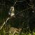 majmok · zöld · baba - stock fotó © serendipitymemories