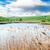 azul · lago · verano · cielo · azul · cielo · forestales - foto stock © serg64