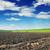 föld · mezőgazdasági · mező · tavasz · kész · vetés - stock fotó © serg64