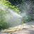 芝生 · スプリンクラー · 水 · 緑の草 · 夏 · 春 - ストックフォト © serg64