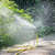 borrifador · verde · plástico · regador · água · plantas - foto stock © serg64