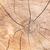 fissuré · arbre · bois · brun · nature · design - photo stock © serg64