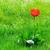 zöld · gyep · gyönyörű · tulipánok · virágok · fű - stock fotó © serg64