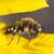 蜂 · 小 · 花 · 青 · アフリカ · 美しい - ストックフォト © serg64