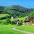 山 · 風景 · パノラマ · 森林 · プラハ · ツリー - ストックフォト © serg64