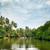 озеро · джунгли · Blue · Sky · облака · лес · пейзаж - Сток-фото © serg64