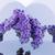 DNA鑑定を · 構造 · アトミック · 折られた · ダブル · スパイラル - ストックフォト © serge001