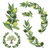 vector wreath with olive branch and olive tree stock photo © sgursozlu