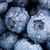 blueberries macro stock photo © shawnhempel