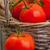 olgun · domates · sepet · meyve · sağlık · grup - stok fotoğraf © shawnhempel