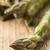 bundle of fresh cut raw uncooked green asparagus vegetable stock photo © shawnhempel
