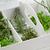 frissen · gyógynövények · öreg · antik · olló · fa - stock fotó © shawnhempel