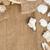 seashells with rope on brown burlap cloth stock photo © shawnhempel