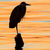 Grey heron, Ardea cinerea, silhouette standing on the sunset lake stock photo © shihina