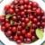 Cherries in the Bowl. stock photo © shyshka