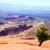 крошечный · Юта · дерево · пейзаж · пустыне · зеленый - Сток-фото © silkenphotography