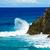 hullám · sziklák · mély · kék · óceán · Új-Dél-Wales - stock fotó © silkenphotography
