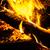 quente · chamas · carvão · vegetal · laranja · madeira - foto stock © silkenphotography