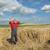 agriculture · désespérée · agriculteur · endommagé · tempête - photo stock © simazoran