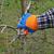mezőgazdaság · fa · gyümölcsös · almafa · közelkép · kéz - stock fotó © simazoran