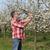 agricultor · ciruela · árboles - foto stock © simazoran