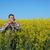 farmer examine blossoming rapeseed field stock photo © simazoran