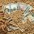 agricola · soia · dollaro · soldi · soia - foto d'archivio © simazoran