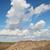 raio · raiz · terreno · cultivado · campo - foto stock © simazoran