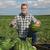 スイカ · メロン · フィールド · 農家 · 手押し車 - ストックフォト © simazoran