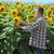 фермер · подсолнечника · области · завода · цветок - Сток-фото © simazoran