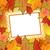 színes · ősz · juhar · levelek · levélpapír · illusztráció - stock fotó © smeagorl